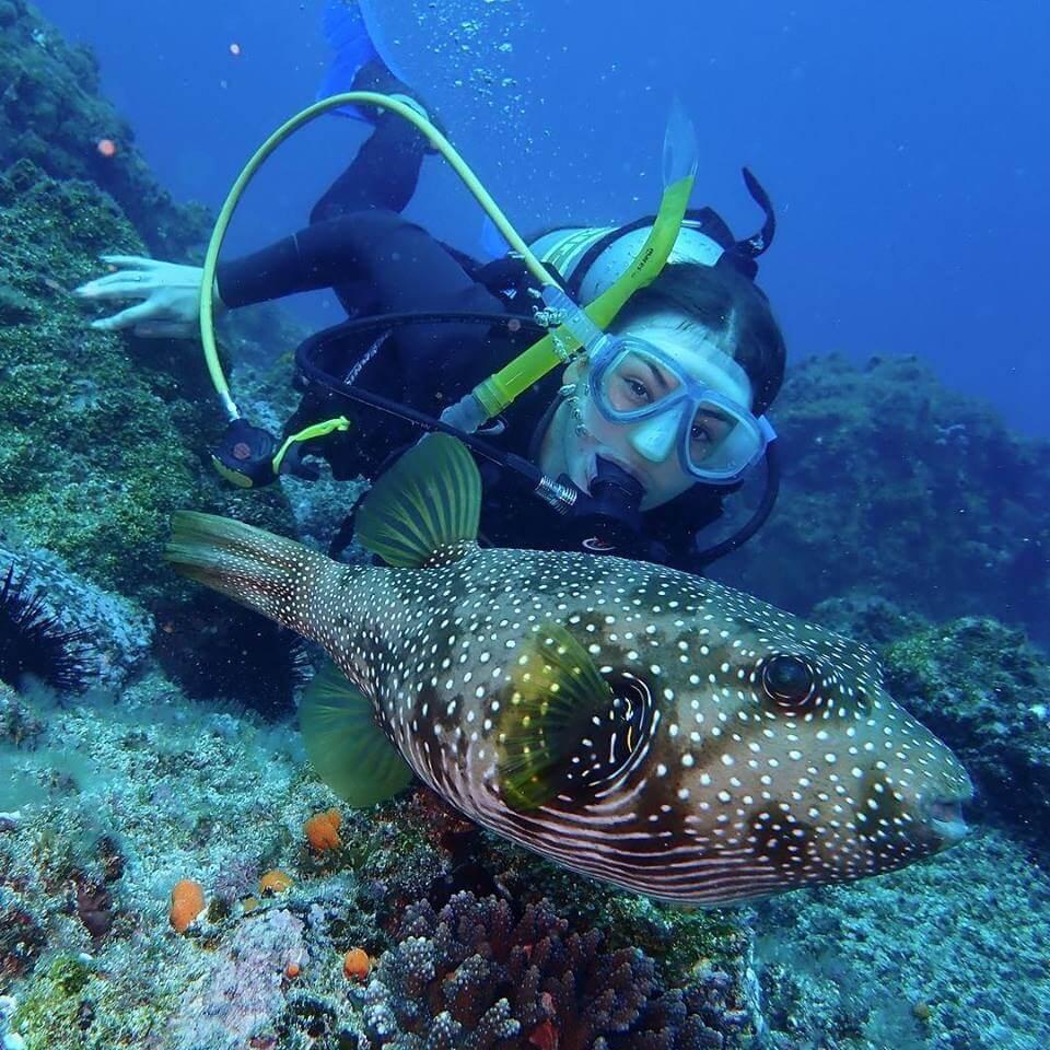 Jetty Dive Centre